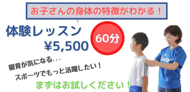 体験レッスン¥5,500